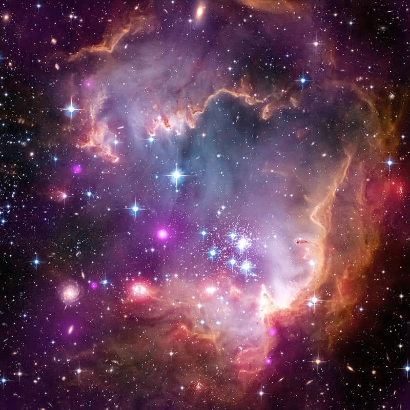 "Taken Under the ""Wing"" of the Small Magellanic Cloud"